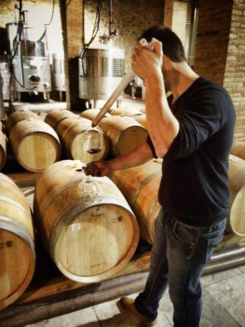 Poblet Monastery wine tasting